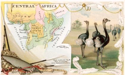 Central Africa map - Ostrich