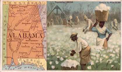 Alabama map - cotton picking