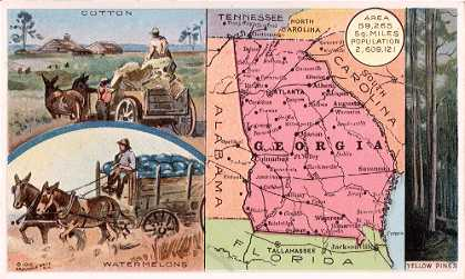 Georgia map - Cotton; Watermelons; Yellow Pines